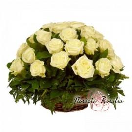 Cos 35 trandafiri albi