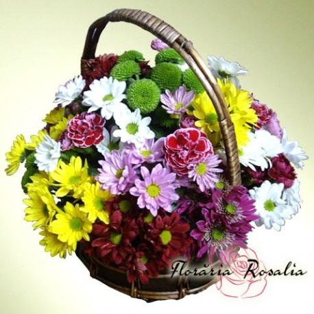 Cos crizanteme multicolore
