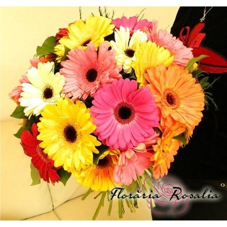 Buchet 25 gerbera multicolore