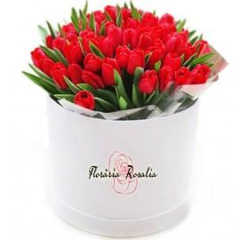 Cutie cu 49 lalele rosii