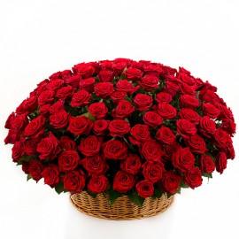 Cos 101 trandafiri