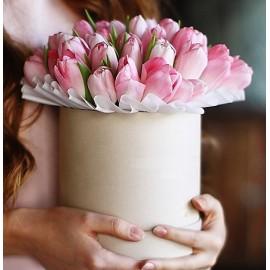 Cutie cu 41 lalele roz
