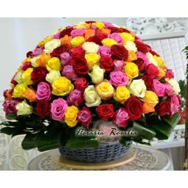 Cos 201 trandafiri multicolori
