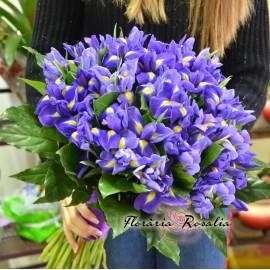 Buchet 49 Irisi
