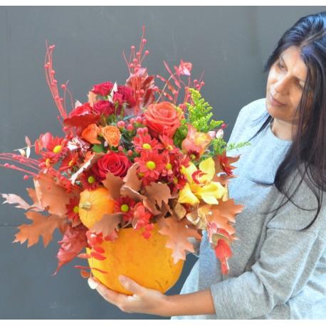Bostanel cu flori de toamna