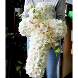 Cruce cu crizanteme si orhidee