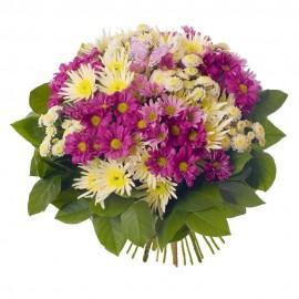 Buchet 19 crizanteme