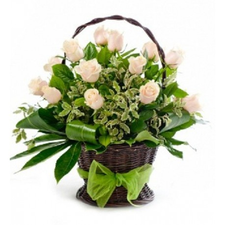 Cos 15 trandafiri albi