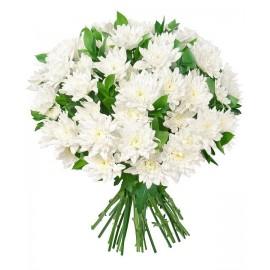 Buchet 19 crizanteme albe