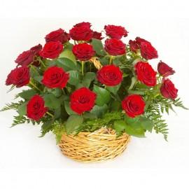 Cos 23 trandafiri rosii